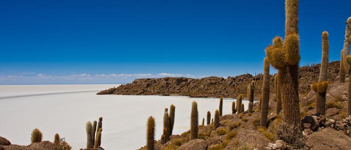 人気の「ウユニ塩湖」は、乾季の絶景も魅力的 通年インスタ映えする写真が撮れる、最強の観光地!