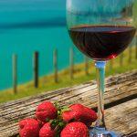 ワイヘキ島でワイナリー巡り! ニュージーランドワインの名産地