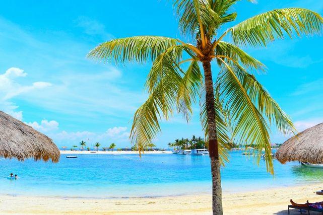セブ島のビーチ
